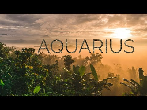 Aquarius - No longer blocked, but you need to look at this offer carefully - Jan 25 - 31