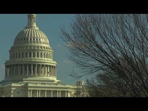 euronews (in English): US House of Representatives approves $1.3 trillion spending bill