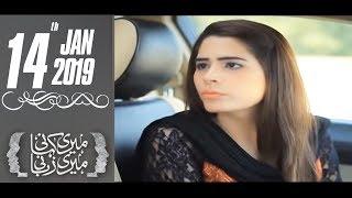 Meri Areeba | Meri Kahani Meri Zabani | SAMAA TV | January 14, 2019