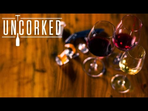 UNCORKED Master Exam Theory S1E05