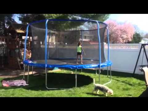 Trampoline 14 Stats With Wire Top Enclosure Youtube