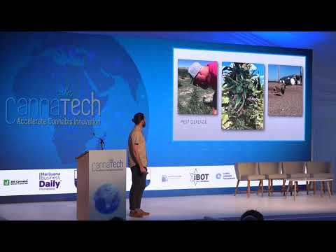 Steven Turetsky's CannaTech Cape Town presentation: The Power of the Plant – A Look at Hemp Genetics