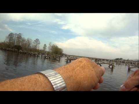 Striper Fishing on the Pamlico River