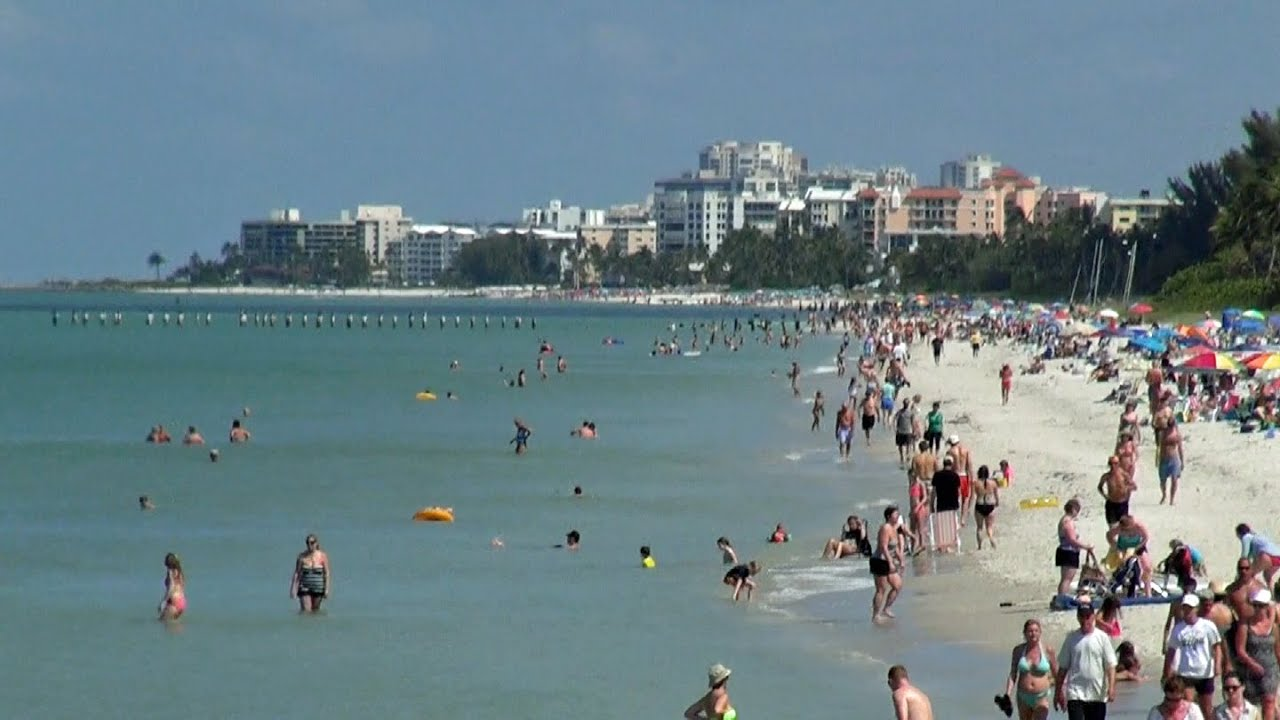 small resolution of naples fl tropical tourist highlights hd