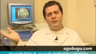 Hamilelikte 8. ay - Dr. Kağan Kocatepe