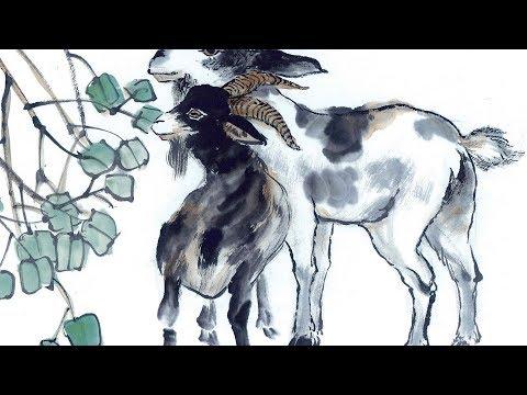 【12生肖2019年运势运程】生肖属羊的人2019年运程详解 易学洪辛老师