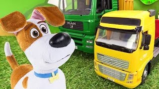 Видео для детей: Собака Макс переезжает к морю