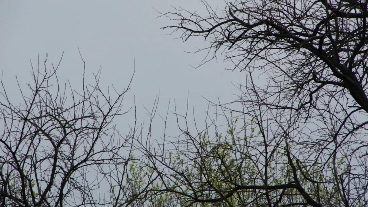 airplanes flying overhead youtube