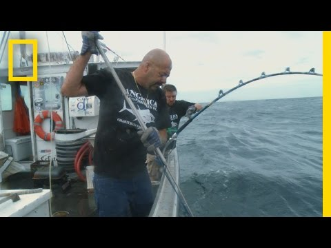 Catch of the Week - The Last Battle | Wicked Tuna