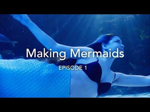Baixar Mermaids Virginia - Download Mermaids Virginia   DL Músicas
