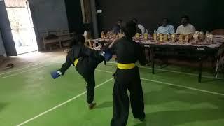 Dragon Tiger Technique Chinis Martial Arts Kung-fu