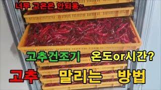 고추재배방법 고추건조기 온도 시간 고추말리는 방법