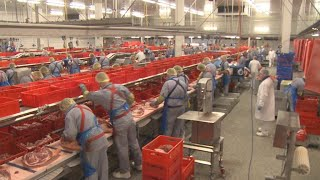 Posted workers: Social dumping continues despite Germany
