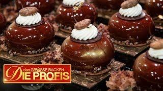 Ultimativer Schoko-Kuchen: Alles ist aus Schokolade | 1/2 | Das große Backen - Die Profis  | SAT.1