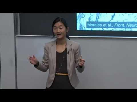 UWEE Research Colloquium: October 13, 2015 - Bing Brunton, University of Washington