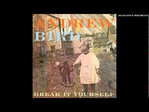 Andrew Bird - Desperation Breeds
