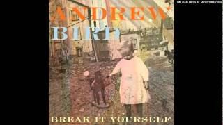 Andrew Bird - Desperation Breeds thumbnail