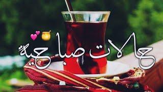 حالات واتس اب صباحيه// صباح الخير // مقاطع انستغرام صباحيه