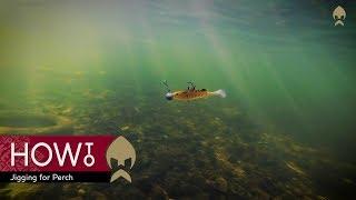 HOW TO Jigging for Perch - Westin-fishing