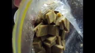 81. How to make DIY Gel Fish Food