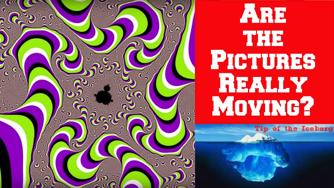 Image result for optical illusions moving