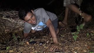Nos encontramos a un Pucuyo, Tapacaminos o Chotacabras un ave nocturna de mal aguero. Parte 5