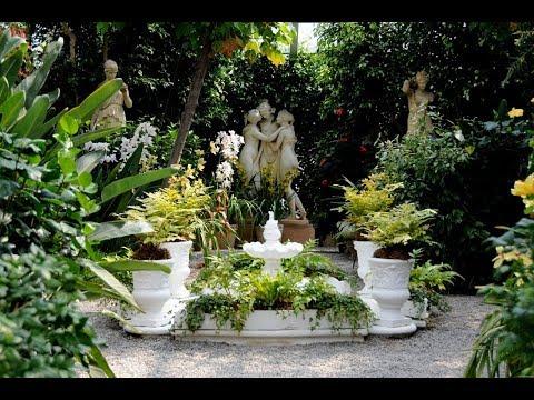 Вопрос: Для террасы в средиземноморском стиле, какие растения подойдут?