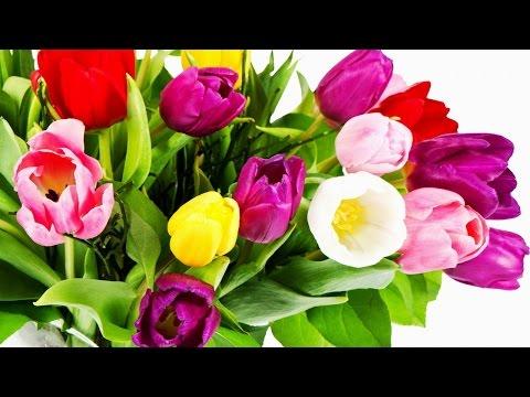 Доставка цветов. Бизнес идея