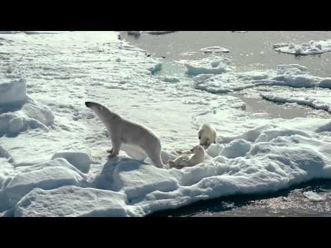 El Ártico 3D