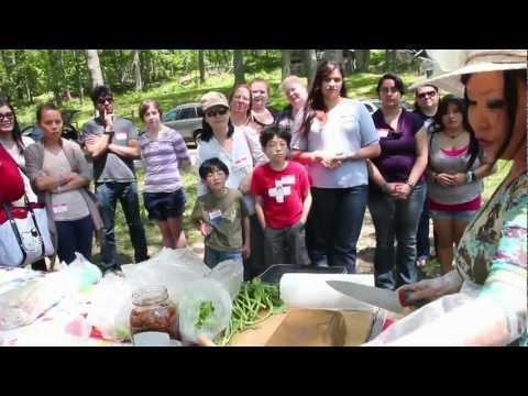 Springtime Korean picnic in Connecticut