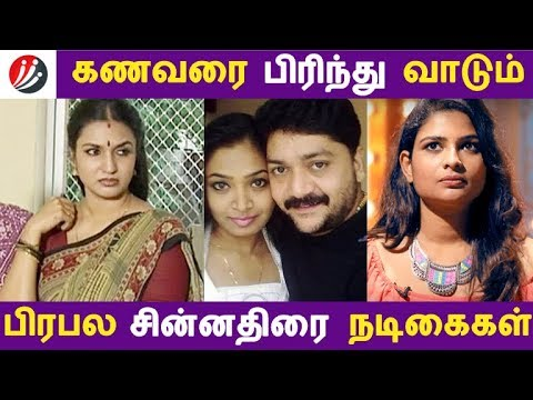 கணவரை பிரிந்து வாடும் பிரபல சின்னதிரை நடிகைகள் | Tamil Cinema | Kollywood News | Cinema Seithigal