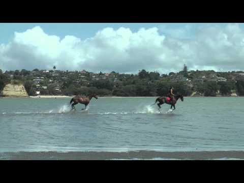 Beach Gallop Blast!!!