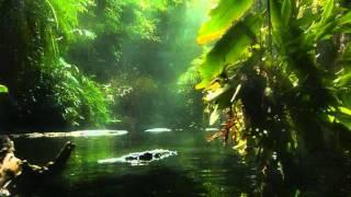Alberto Ginastera: Panambí op.1 (1937)