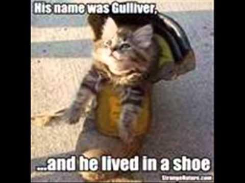 hqdefault funny stupid animals episode 2 youtube