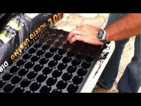 como hacer semilleros