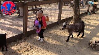 Кукла Ненуко и Ярослава. Зоопарк для детей. Прогулка в парке с животными. Tiki Taki Cook