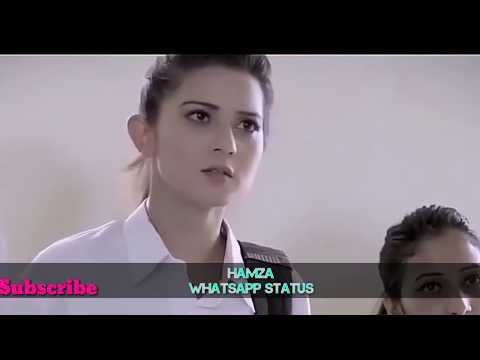 Hamara Haal Na Pucho 😐/ Best Romantic Video In India 💏/ sad love 💑