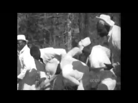 Afro American Work Songs in a Texas Prison (1966) Documental