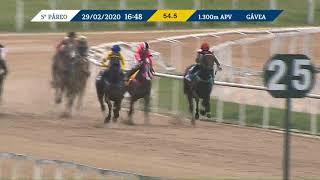 Vidéo de la course PMU PREMIO VOLTIGEUR (INTERNET)
