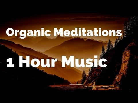1 HOUR Organic Meditations Two | Tuba, French Horns, Marimba, Calming, Relaxed