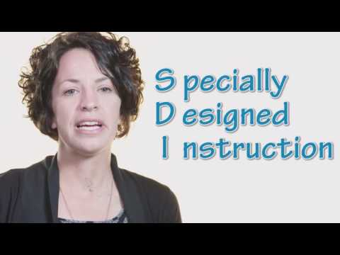 Special Education - The Basics of an Individualized Education Program (IEP)