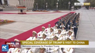 LIVE: Xi Jinping hosts welcome ceremony for Donald Trump in Beijing thumbnail