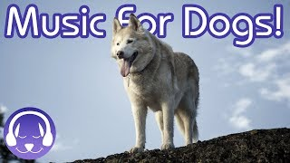 Therapy for Dogs: 6 Hours of Deep, Relaxing Music for Your Canine!