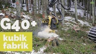 Grov slutavverkning gran i Värmland, G40 plus!