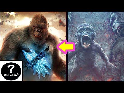 Nguồn Gốc và Năng Lực của King Kong (2021) |Bạn Có Biết?