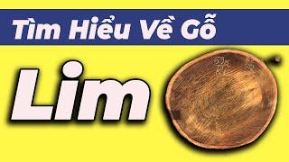 gỗ lim là gì ?  phân biệt gỗ lim lào và lim nam phi ?