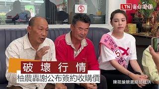 謝龍介公布簽約收購價 麻豆柚農轟破壞行情(陳筱諭競選總部提供)