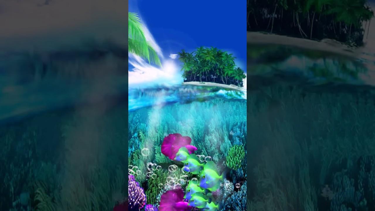Samsung Wallpaper Themes: [Samsung Themes-Motion Wallpaper] Tropical Paradise Live