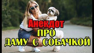 Анекдот про Даму с собачкой Прикольный анекдот Шутка