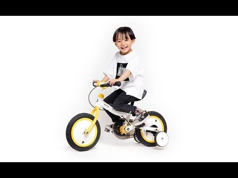 Kwheel Qicycle  Chlid Bike 12inch